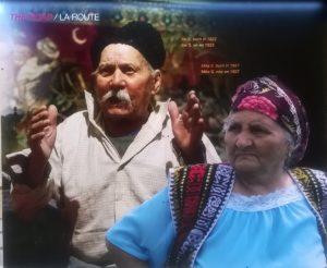 deportazione rom