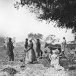 Tratta degli schiavi africani