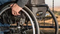 ministro della disabilità