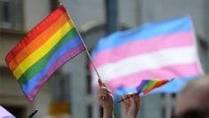 bandiera arcobaleno lgbt bandiera transessualità