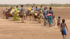 Global Compact for Migration attenzione bambini migranti