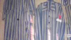 Olocausto, Porrajmos, Omocausto Giornata della Memoria 2019