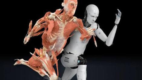 Real Bodies, oltre il corpo umano Milano Leonardo da Vinci Crioconservazione