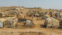 Siria 2.500 bambini stranieri nei campi di sfollati legami con Isis