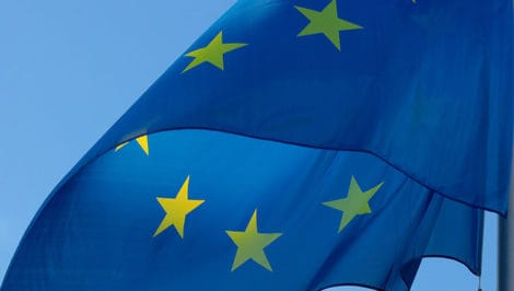 Elezioni Europee accessibili a tutti richiesta dell'Associazione Italiana Persone Down