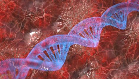 test del DNA studenti universitari per i minisitri italiani