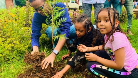 record riforestazione in Etiopia