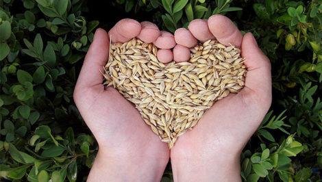 Giornata Mondiale Alimentazione FAO Sergio Mattarella