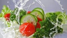 eco menu greenpeace, sostenibilità ambientale cibo green