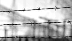 Chi ti ama così la memoria dell'Olocausto di Edith Bruck