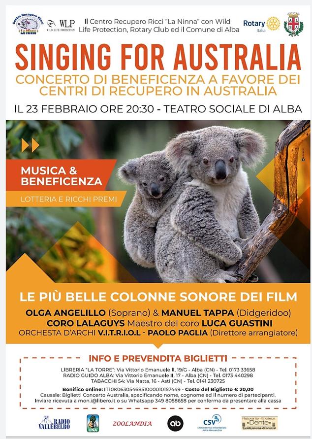 """""""Singing for Australia"""" un concerto per aiutare i Koala feriti dagli incendi"""