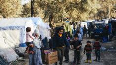 rifugiati in Grecia isole Egee isola Lesbo FOTO UNHCR Achilleas Zavallis