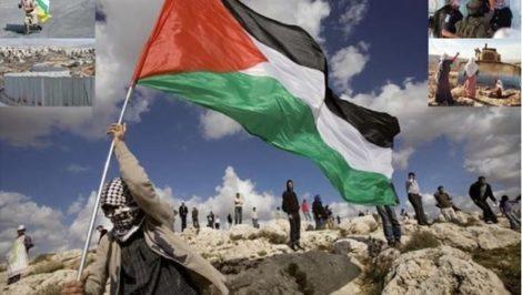 palestina manifestazione