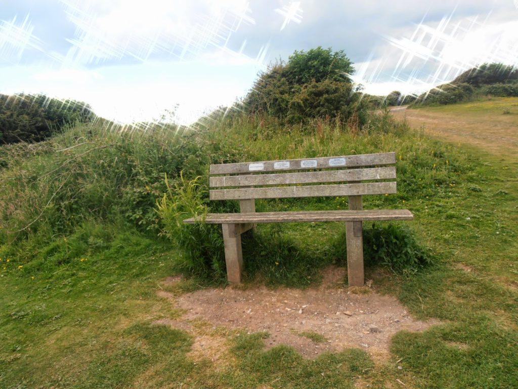 Panchina di Anne e Tim, Beachy Head, Regno Unito